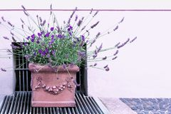 A ceramic pot with beautiful stucco with violets and lavender stands on the sidewalk stock images