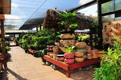 Ceramic pottery & plants Stock Photo