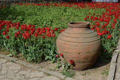 Ceramic pottery and red tulips Royalty Free Stock Photo