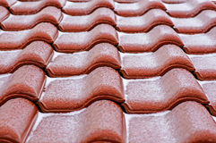 Ceramic roof Stock Photography
