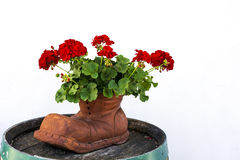 Ceramic shoe with flowers Royalty Free Stock Image