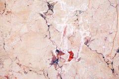 Ceramic Stone Wall stock photography