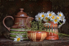Ceramic tableware and chamomile Royalty Free Stock Photos