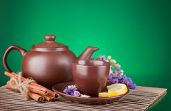 Ceramic teapot with tea Stock Photography