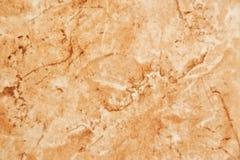 Ceramic tile Stock Images