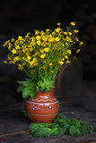 Ceramic vase with buttercups Royalty Free Stock Photography