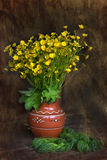Ceramic vase with buttercups Stock Images