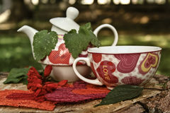 Ceramic vintage tea pot and cup with flowers Royalty Free Stock Photography