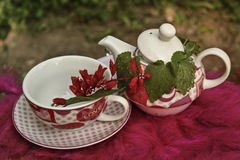 Ceramic vintage tea pot and cup with flowers Royalty Free Stock Photo