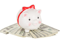 Ceramic white pig moneybox Stock Images