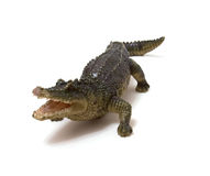 Ceramics crocodile isolated on white Royalty Free Stock Photos