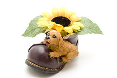 Ceramics dog on shoe with sunflower Royalty Free Stock Photos
