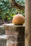 Ceramiczna piłka jako ogrodowa dekoracja Zdjęcia Royalty Free