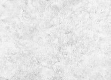 Ceramiczna porcelany kamionki płytki tekstura lub wzór Biel i G obraz stock