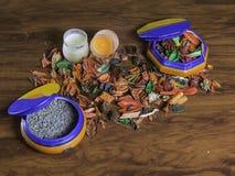 Ceramiczny garnek z suchymi kwiatami i lavander Zdjęcia Stock
