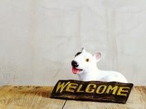 Ceramiczny pies z znakiem powitalnym na drewnianym tle fotografia royalty free