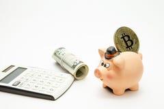 Ceramiczny prosiątko bank z złotym bitcoin na wierzchołku, dolarach i kalkulatorze, zdjęcie stock
