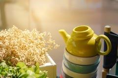 Ceramiczny teapot na ceramicznym teacup z światłem słonecznym fotografia royalty free
