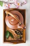 Ceramiczny teapot na drewnianej tacy obraz royalty free