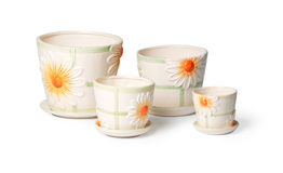 ceramicznych flowerpots salowe rośliny ustawiać Fotografia Royalty Free