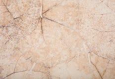 Ceramiektegelachtergrond Stock Foto