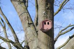 Ceramika ptaka dom zdjęcie royalty free