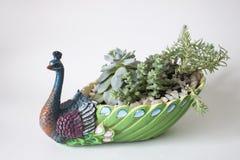 Ceramische bloempot in de vorm van een pauw Stock Foto
