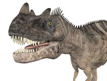 Ceratosaurus Fotografia Stock Libera da Diritti