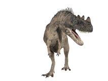 Ceratosaurus Illustrazione di Stock
