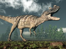 Ceratosaurus dinosaur - 3D render Royalty Free Stock Images