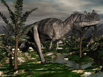 Ceratosaurus dinosaur - 3D render Royalty Free Stock Images