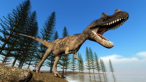 Ceratosaurus dinosaur at the shoreline - 3D render. Ceratosaurus dinosaur roaring while walking at the shoreline in front of calamite trees by day - 3D render Royalty Free Stock Images