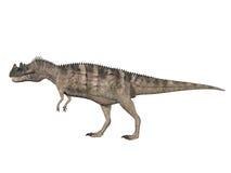 Ceratosaurus Royalty Free Stock Photos