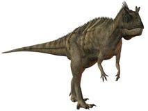 Ceratosaurus nasicornis-3D Dinosaur Royalty Free Stock Image