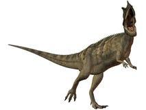 Ceratosaurus nasicornis-3D Dinosaur Royalty Free Stock Images