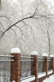 A cerca é coberta com a neve no parque do inverno Fotografia de Stock Royalty Free