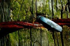 Cerca 5 do arame farpado Foto de Stock