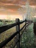 A cerca Foto de Stock