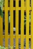 Cerca amarilla Fotografía de archivo libre de regalías