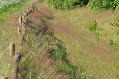 A cerca ao longo da estrada de terra Cerca com cargos de madeira Uma estrada secundária Foto de Stock Royalty Free