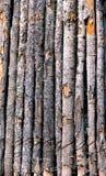 Cerca With Bark de poste Imágenes de archivo libres de regalías