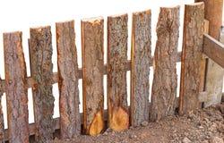 Cerca Bark en la tierra Imágenes de archivo libres de regalías