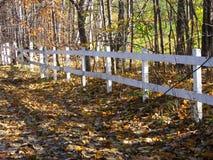 Cerca blanca hecha de la madera cerca del bosque y del camino cubiertos de hojas durante las fotos de la Caída-acción Fotografía de archivo libre de regalías
