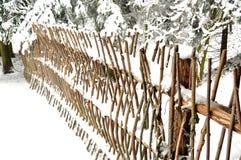 Cerca bloqueado pela neve do galho na floresta conífera Fotos de Stock