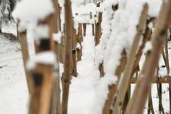 Cerca bloqueado pela neve do galho no fim da floresta acima Fotografia de Stock Royalty Free