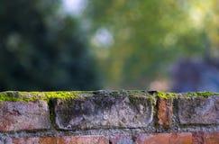 Cerca Bokeh do tijolo Fotos de Stock Royalty Free