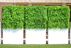 Cerca branca com uma grama verde Foto de Stock Royalty Free