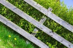 Cerca cinzenta de madeira velha que cobre o arbusto verde do arbusto na vila do lado do país Foto diagonal, bom fundo imagens de stock royalty free