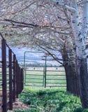 Cerca Closed Gate imagem de stock royalty free
