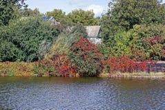 A cerca coberto de vegetação e a casa no verde no lago suportam em um dia ensolarado Imagem de Stock Royalty Free